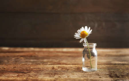 Healing chamomile flower in small glass bottle on brown wooden background Stock Photo