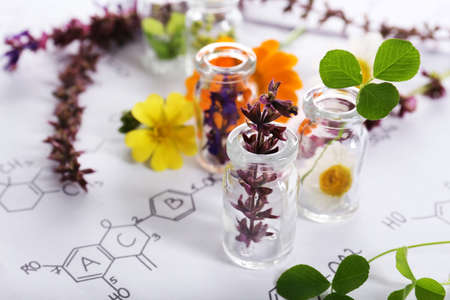 Different healing flowers in small glass bottles on paper with chemistry formula Stock Photo