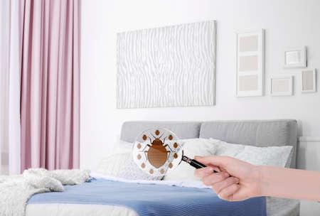 Donna con la lente d'ingrandimento che rileva insetto di letto in camera da letto