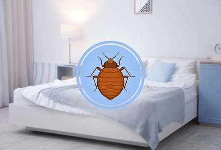 Symbol of bug and infested bed on background