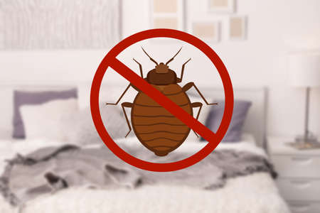 Stop bug sign and clean bed in room Zdjęcie Seryjne - 96054244