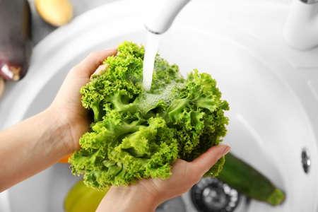 Female hands washing fresh vegetables in kitchen sink Stock Photo