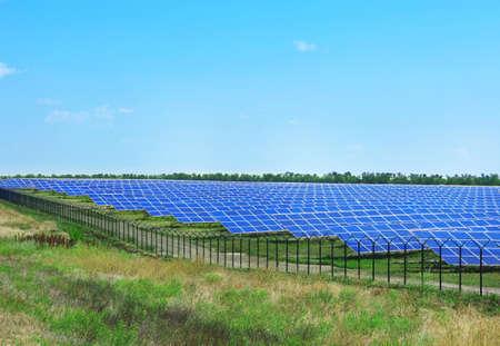 Solar panels in summer field