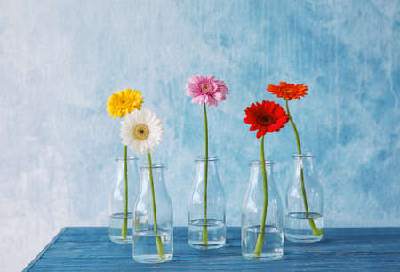 Flowers in vases on color background