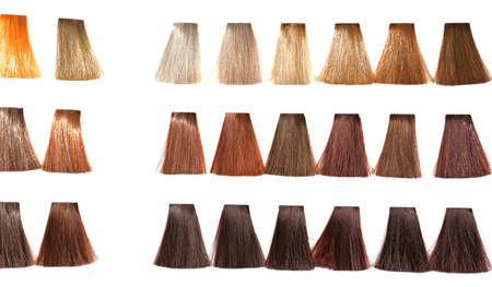 Palette tints for hair dyeing in catalog