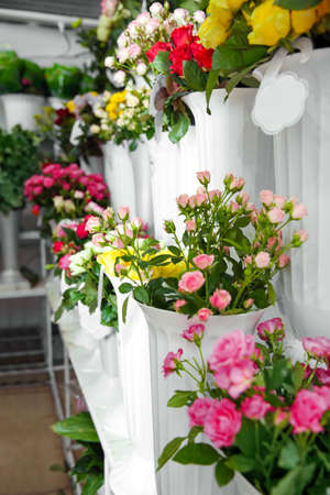 Plastic Vases With Beautiful Roses In Flower Shop Stock Photo