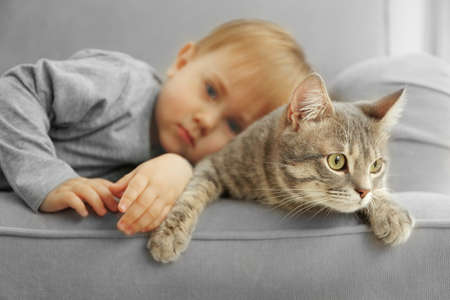 Closeup of adorable little boy with cute cat on grey armchair