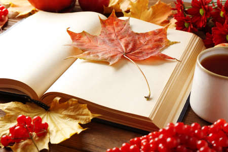Closeup of opened book with autumn leaves on table