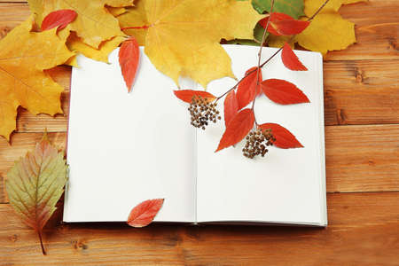Autumn composition with book on wooden background, closeup