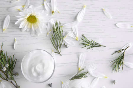 Nourishing cream, thuja branches and chamomile petals on white wooden background Zdjęcie Seryjne