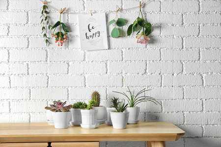 Floral composition of succulents and cactus with greeting card on white brick wall background