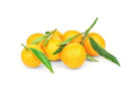 Set of tangerines with leaves on white background