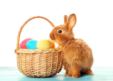 Cute fluffy bunny and wicker basket with colourful Easter eggs on white background