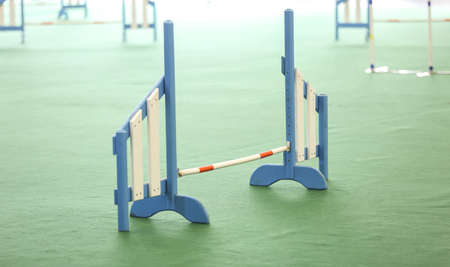 Barrier prepared for race at dog show