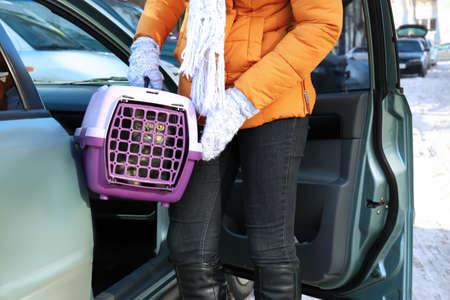 femme avec un chat dans la boîte à roulettes près de la voiture