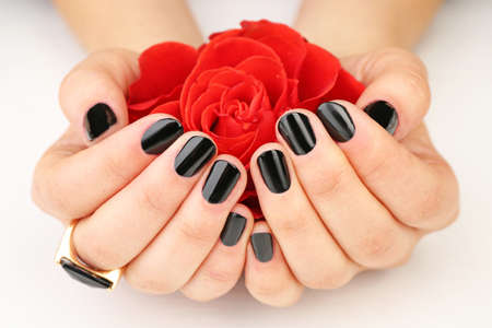 Nail art concept. Beautiful female hands with manicure holding flower, closeup Stock Photo
