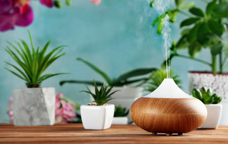 Aroma oil diffuser and plants on table 스톡 콘텐츠