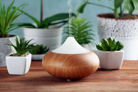 Aroma oil diffuser and plants on table Standard-Bild - 103188770