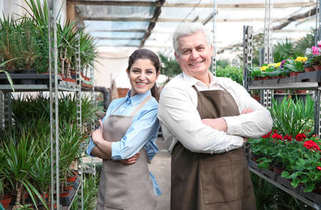 Male and female florists in greenhouse