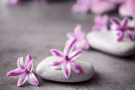 Spa stones and hyacinth on gray table