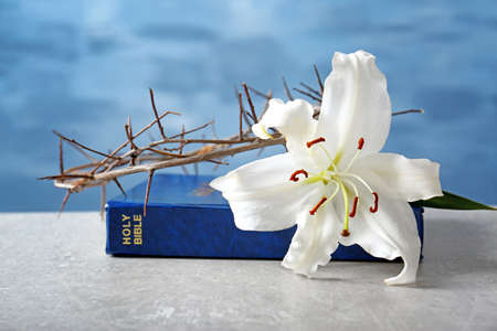 Holy Bible, lily and crown of thorns on light background