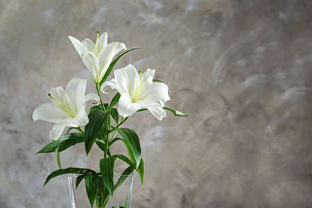 Beautiful white lilies on grunge wall background