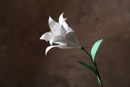Beautiful paper lily on dark background Stock Photo