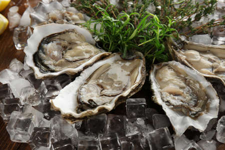 Tasty fresh oysters with herbs and ice, closeup. Aphrodisiac food for increasing sexual desire Stock Photo