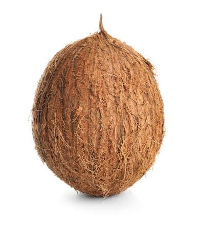 Ripe whole coconut on white background Reklamní fotografie