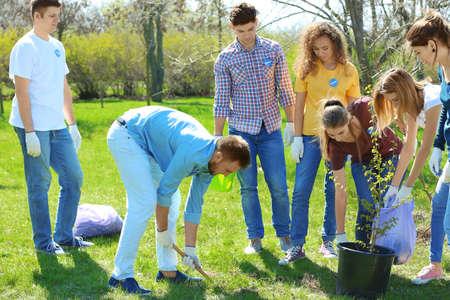 Group of volunteers working in park on sunny day Standard-Bild - 97796994