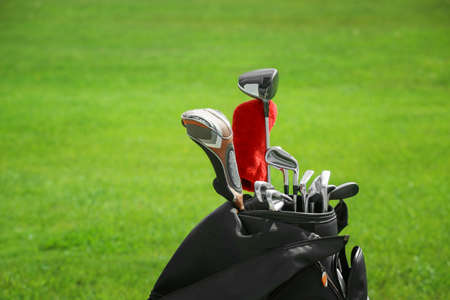 Bag with drivers on golf course, closeup