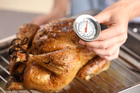 Young woman measuring temperature of whole roasted turkey with meat thermometer