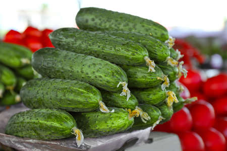 Fresh cucumbers in the market