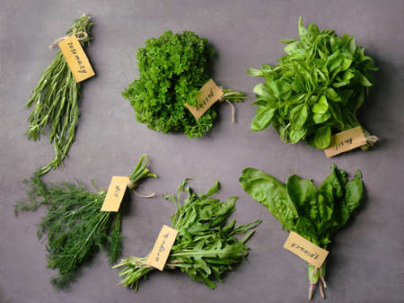 Various fresh herbs on dark background Banco de Imagens
