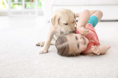 Cute child with Labrador Retriever at home