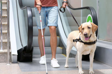 Blind man with guide dog near escalator