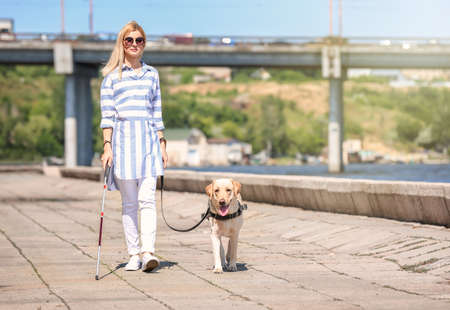 Guide dog helping blind woman on embankment