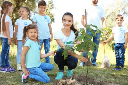 Young volunteers with children planting tree in park
