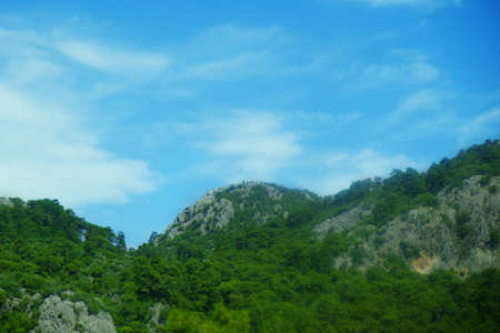 Picturesque landscape with mountain forest Stock Photo