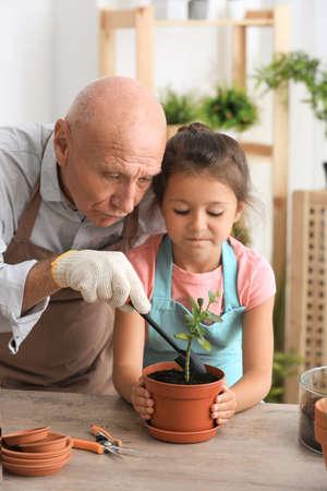 Senior man gardening with his granddaughter at home