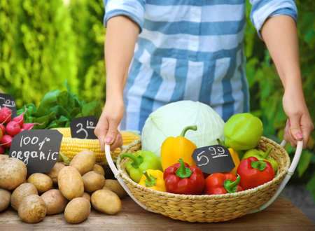 Woman holding wicker basket with fresh vegetables at farmers market