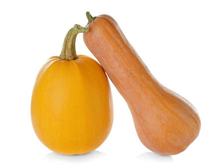 Ripe spaghetti squash and pumpkin on white background