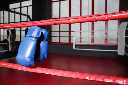 Boxing gloves on ropes of ring in gym Archivio Fotografico