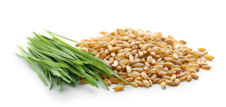 Pile of seeds and wheat grass on white background Stockfoto
