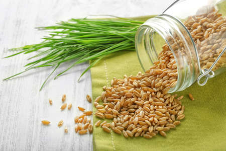 Wheat grass seeds scattered from jar and sprouts on wooden table Stock Photo