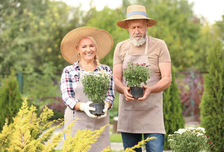 Elderly couple working in garden