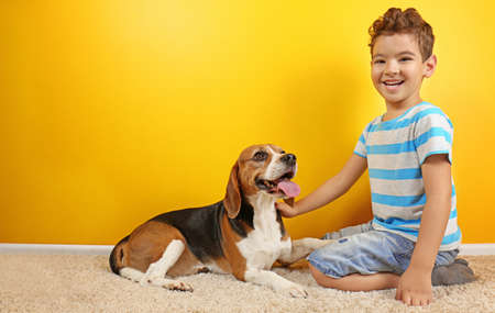 Cute boy with dog near color wall