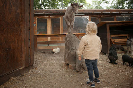 Cute little girl looking at funny goat in petting zoo Imagens