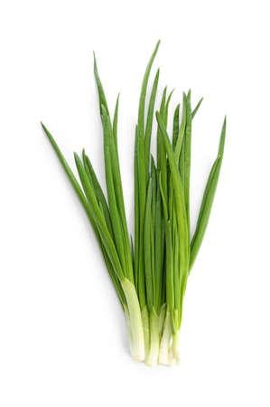 Fresh green onion on white background Stock Photo