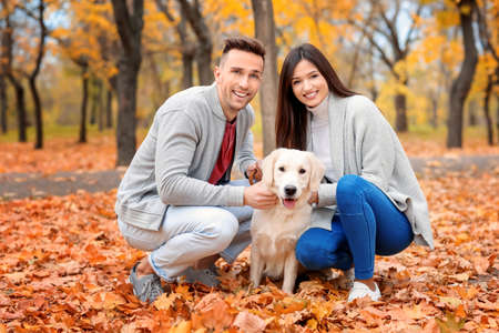 Young couple with their dog in park